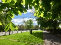 London-Dulwich-weltreize - 4