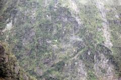 weltreize.com-neuseeland-milford-sound-landschaft-hubschrauber