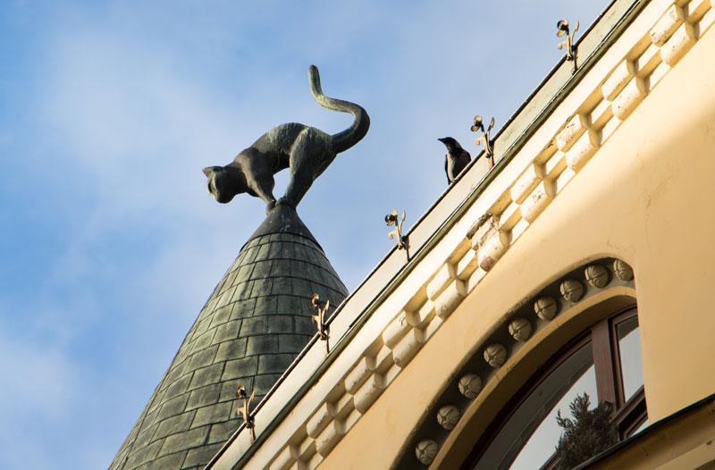 Lettland-Riga-Katzenhaus-PASSENGER-X