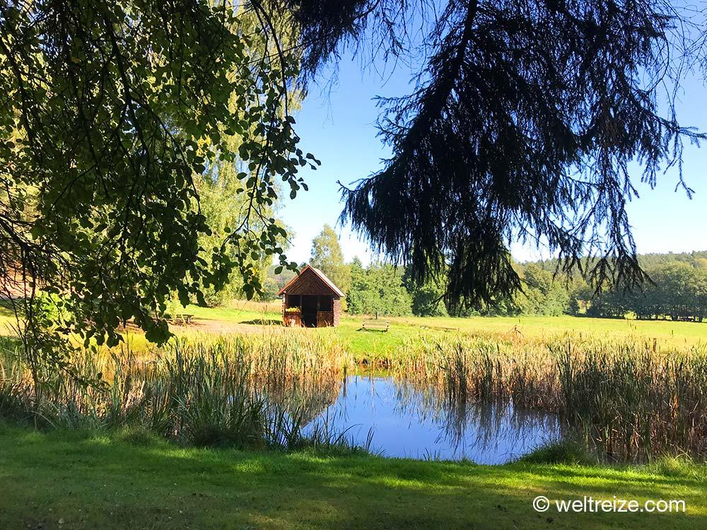 Hütte an einem Teich in Göhrde im Wendland