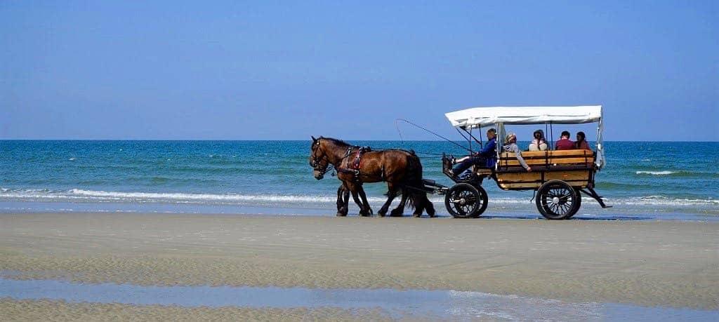 Kutschfahrt am Strand von Juist